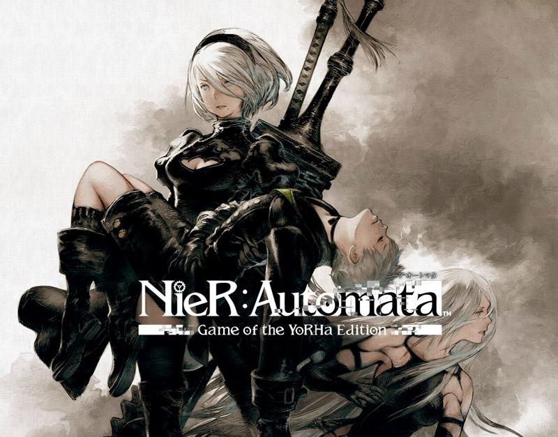 NieR:Automata Become As Gods Edition (Xbox One), Never Ending Level, neverendinglevel.com
