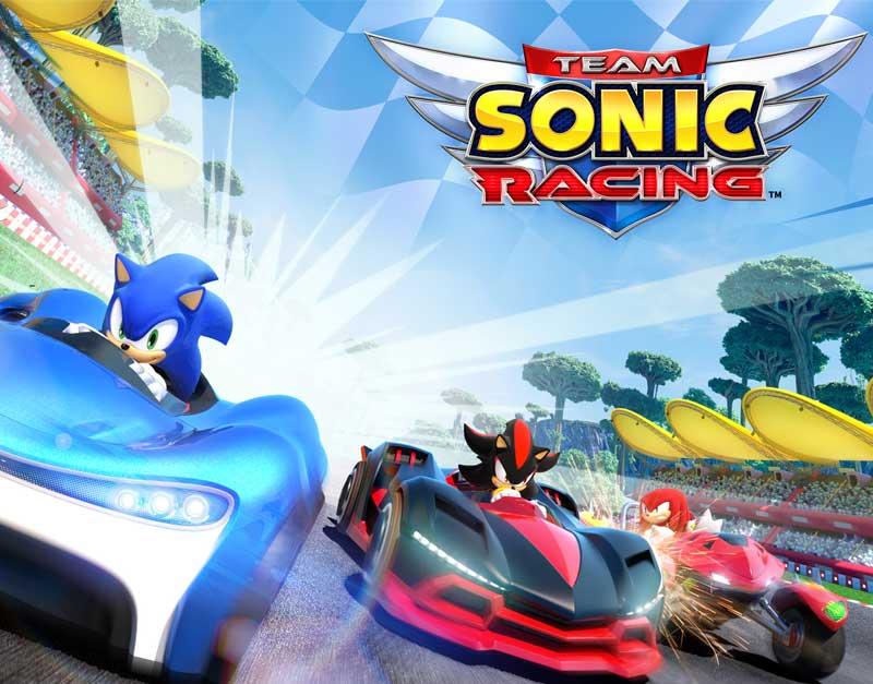 Team Sonic Racing™ (Xbox Game EU), Never Ending Level, neverendinglevel.com