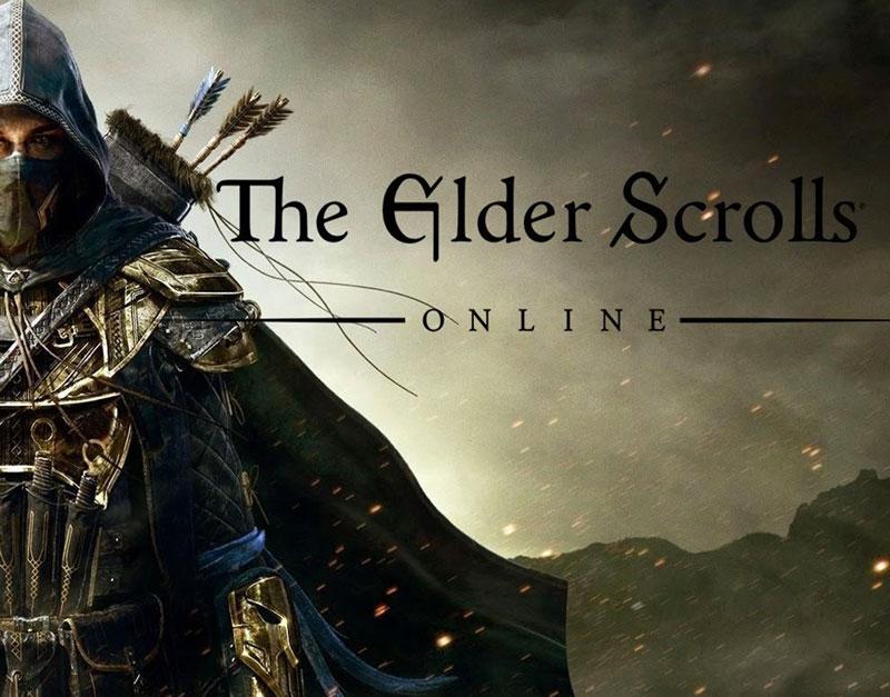 The Elder Scrolls Online (Xbox One), Never Ending Level, neverendinglevel.com